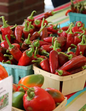 Red peppers at the famers' market.