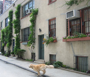 Washington Mews, Greenich Village, New York.