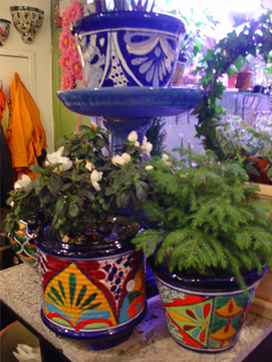 Fabulous potted plants at Dig, in Brooklyn, New York.