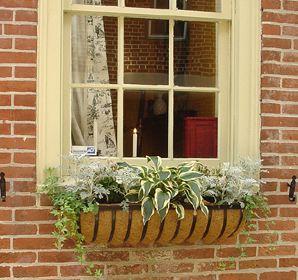 Federal row house window box garden.