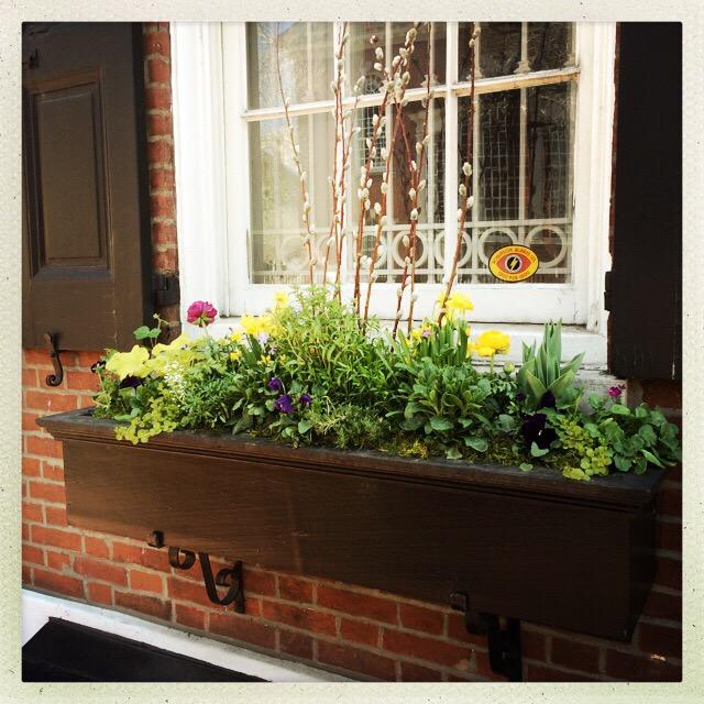 Spring Windowbox